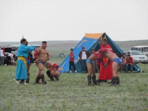 Nadam Festivali Deve güreşleri.. Adamlar çok iri ama öyle değil mi?